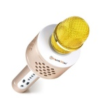 Přenosný reproduktor Technaxx MusicMan PRO BT-X35, karaoke mikrofon, zlatý/stříbrný